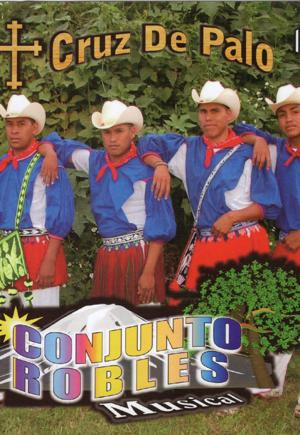 Conjunto Robles Musical