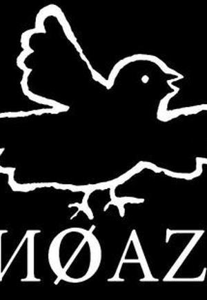 Noazi