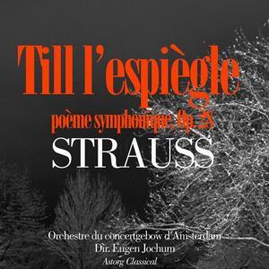 Strauss : Till l'espiègle - Don Juan