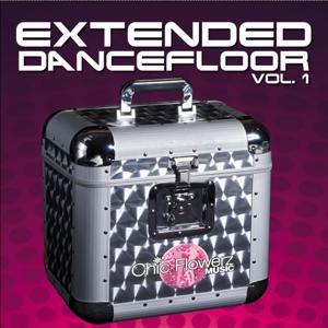 Extended Dancefloor, Vol. 1