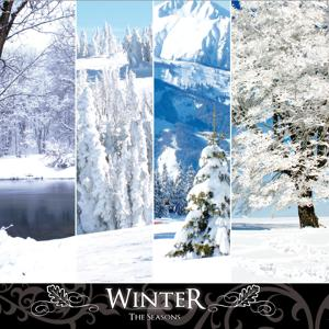 The Seasons: Winter