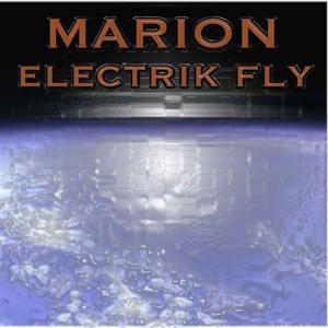 Electrik Fly
