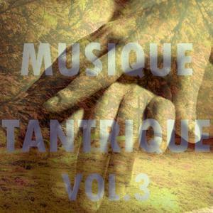 Musique tantrique, vol. 3
