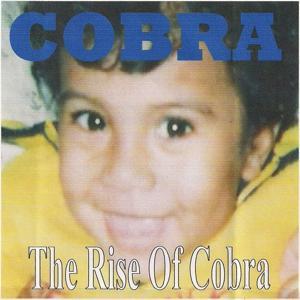 The Rise of Cobra