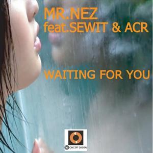 Waiting for You (Davies Dub Mix)