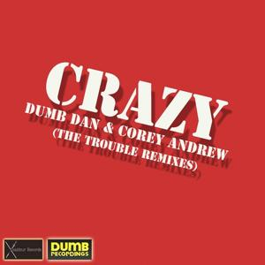 Crazy-the Trouble Remixes