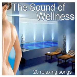 The Sound of Wellness (20 Relaxing Songs)