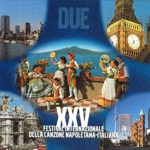 XXV Festival internazionale della canzone napoletana italiana, Vol. 2