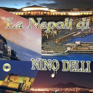 La Napoli di Nino Delli