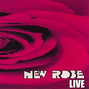 New Rose live