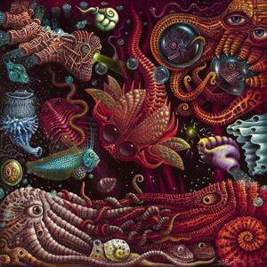 Octopussies Liquor Store