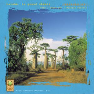 Planète verte: lalabe, le grand chemin (madagascar)