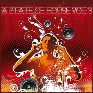 A State Of House Vol.3