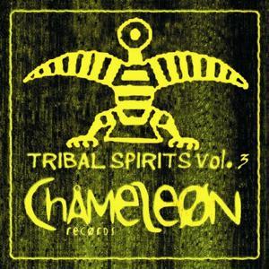 Tribal Spirits, Vol. 3
