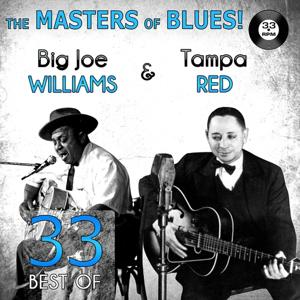 The Masters of Blues! (33 Best of Big Joe Williams & Tampa Red)