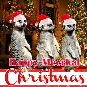 Happy Meerkat Christmas