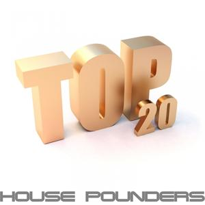 Top 20 House Pounders (Selected By Discomichl, an Ultimate Voyage Into Electro, Disco and Deep House)