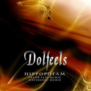 Hippopotam (Remix)
