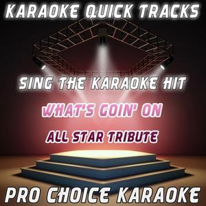 Karaoke Quick Tracks : What's Goin' On (Karaoke Version) (Originally Performed By All Star Tribute)