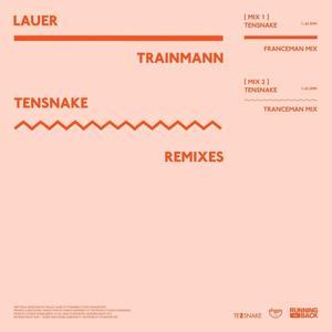 Trainmann (Tensnake Remixes)