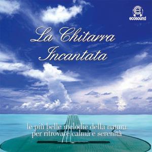 La Chitarra Incantata (Ecosound musica relax meditazione)