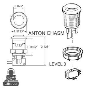 Anton Chasm - Level 3