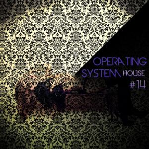 Operating System House, Vol. 14