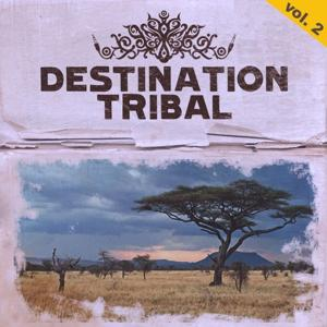 Destination Tribal, Vol. 2 (The Best of Tribal House Music)