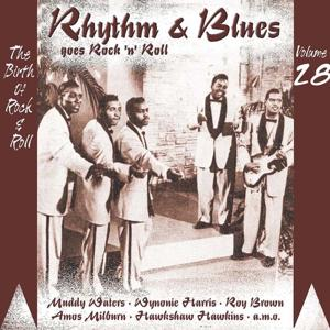 Rhythm & Blues Goes Rock & Roll, Vol. 28