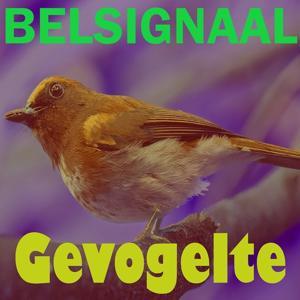 Gevogelte Belsignaal