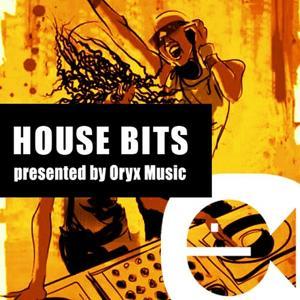 House Bits, Vol 2.1