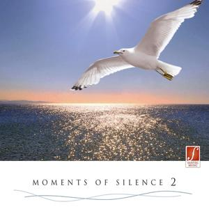 Moments of Silence, Vol. 2