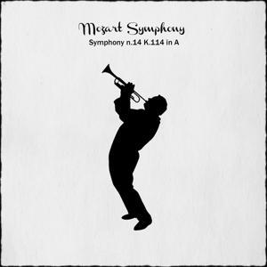 Mozart: Symphony No. 14 in A Major, K.114