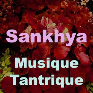 Musique tantrique (Vol. 3)