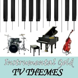 Instrumental Gold: TV Themes