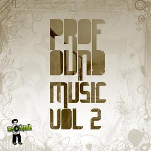 Profound Music, Vol. 2
