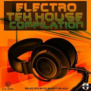 Electro Tek House Compilation