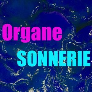 Sonnerie organe