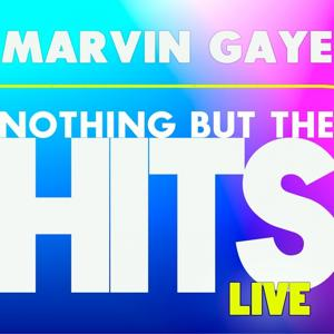 Marvin Gaye's Nothing But the Hits (Live)