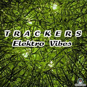 Elektro Vibes (Album)