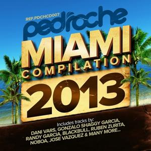 Pedroche Miami Compilation 2013