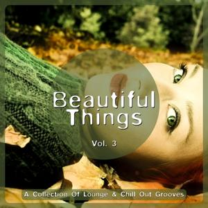 Beautiful Things, Vol. 3 (A Collection Of Lounge & Chill Out Grooves)