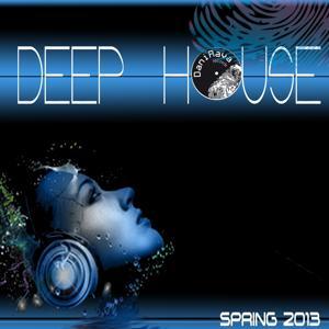 Deep House, Vol. 1 (Spring 2013)