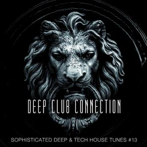 Deep Club Connection, Vol. 13
