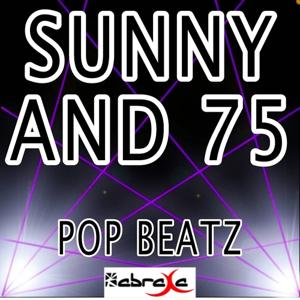 Sunny and 75 - A Tribute to Joe Nichols