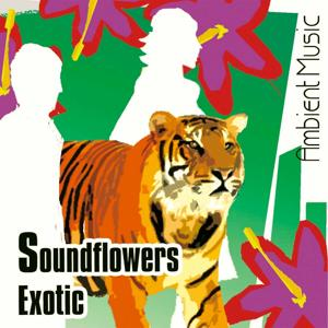 SoundFlowers Exotic (Ecosound Musica Chillout Ambient)