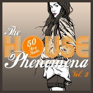 The HOUSE Phenomena - 50 Sexy Tracks, Vol. 3