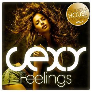 Sexy Feelings - Delicious House Clubbing, Vol. 4