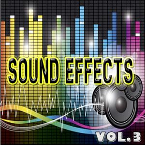 EFX - Sound Effects, Vol. 3 (Footsteps, Sneeze, Laugh, Birds, Screams and More)