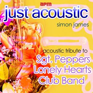 Acoustic Tribute to Sgt Peppers Lonely Hearts Club Band